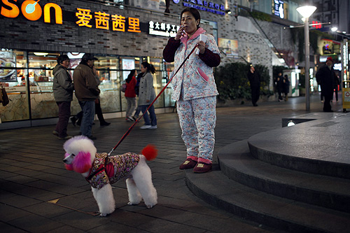 A woman smokes a cigarette as she walks her pet dog on a pedestrian street in downtown Shanghai.