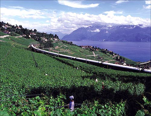 Onboard the royal Venice Simplon-Orient Express