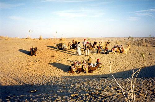 Thar desert near Jaisalmer.