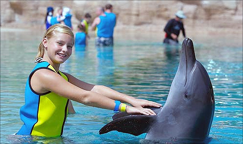 Dolphin Bay at Atlantis The Palm.
