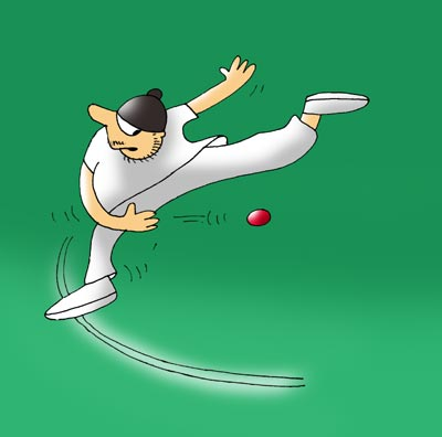 An illustration showing Harbhajan's effort during the match against New Zealand on March 11, 2009