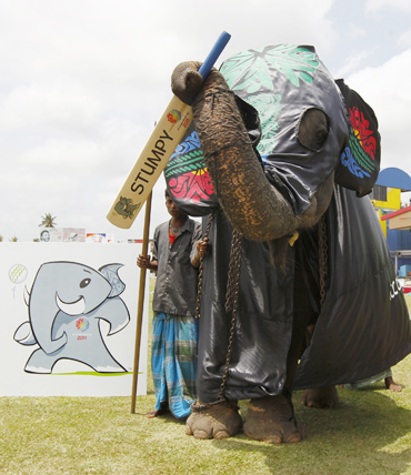 An elephant stands next to a picture of the upcoming Cricket World Cup in 2011 mascot in Colombo