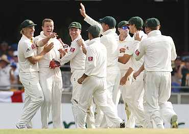 Peter Siddle celebrates after picking up an Ashes hat-trick in Brisbane