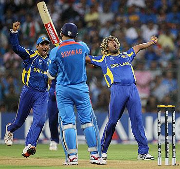 Lasith Malinga celebrates the wicket of Virender Sehwag
