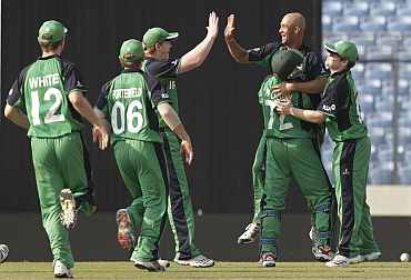 Ireland players celebrate after picking up a wicket