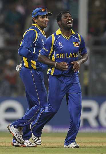 Sri Lanka's Muttiah Muralitharan celebrates after picking up a wicket