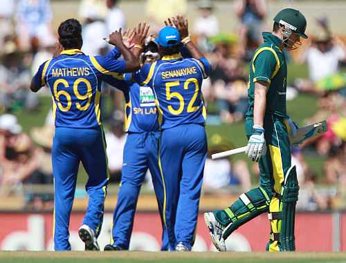 Sri Lankan players celebrate after a fall of an Australian wicket