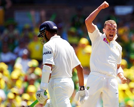 Peter Siddle celebrates after claiming the wicket of Rahul Dravid