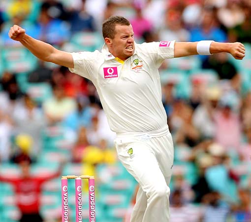 Peter Siddle celebrates taking the wicket of Gautam Gambhir