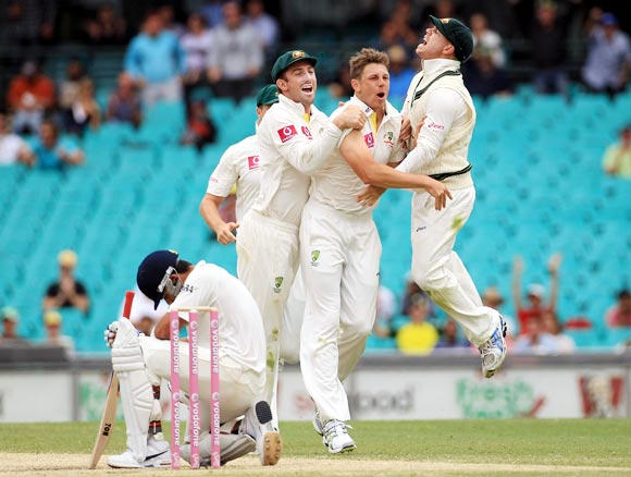 The Australian team celebrates as Virat Kohli sits dejected after his dismissal during the Sydney Test