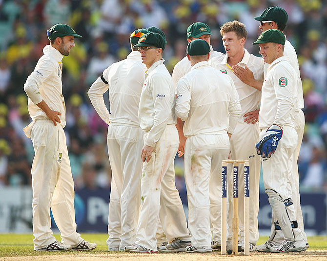 The Australian players celebrate a wicket