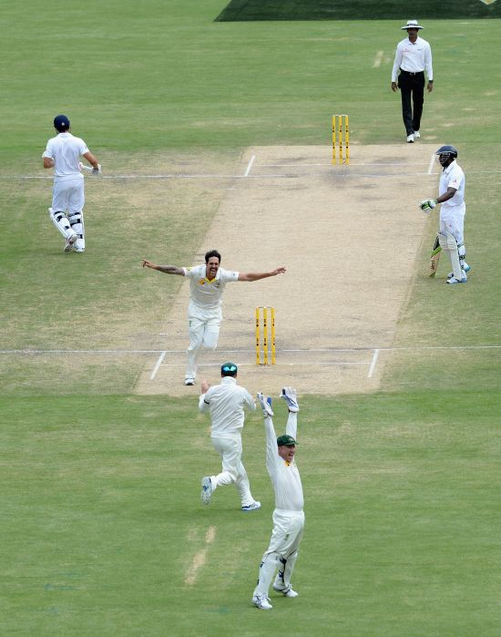 Mitchell Johnson celebrates after dismissing Alastair Cook