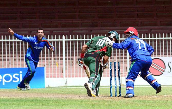 Afghanistan's Samiullah Shenwari celebrates the dismissal of Kenya's batsman Ragheb Aga