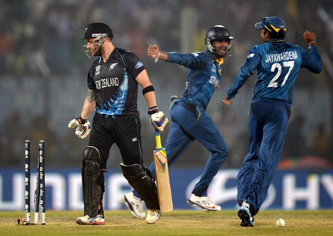 Sri Lankan players celebrate the dismissal of Brendon McCullum