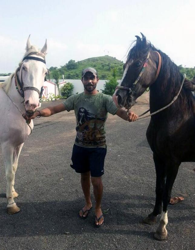 Ravindra Jadeja with his horses Kesar and Ganga