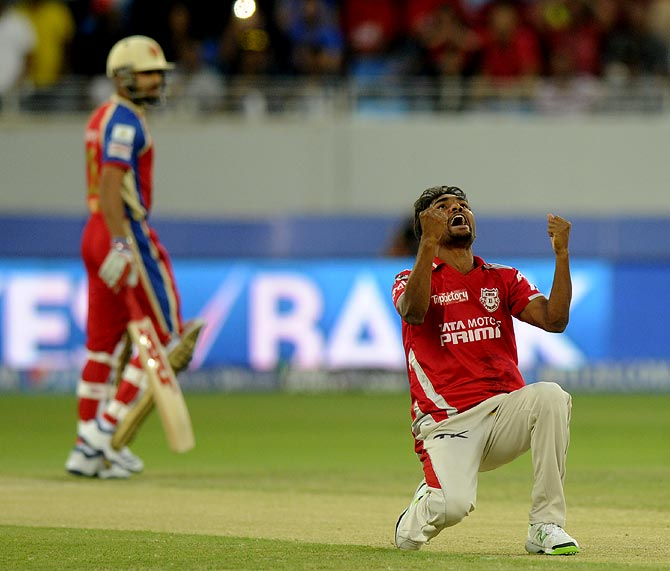 Sandeep Sharma celebrates after taking the wicket of Virat Kohli