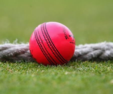 The pink ball that was trialed by the Mar