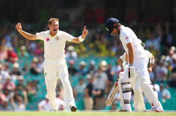 Ryan Harris celebrates after taking the wicket of Alastair Cook of England during Day 2 of the fifth Ashes Test against England at Sydney Cricket Ground on January 4, 2014