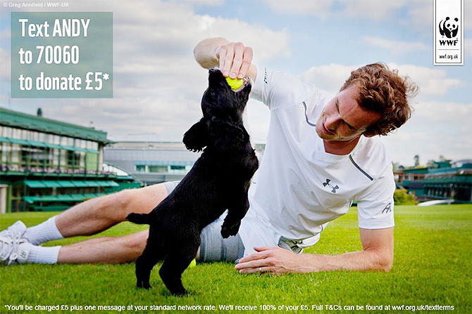 Andy Murray plays with pups in sniffer-dog video