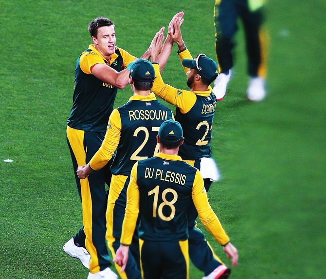 Morne Morkel celebrates after bowling Kane Williamson. Photograph: Hannah Peters/Getty Images