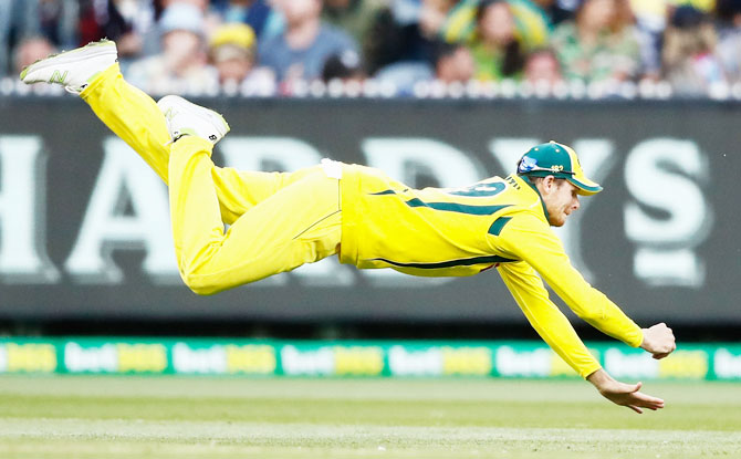 Australia' Steven Smith dives as he attempts to take a catch