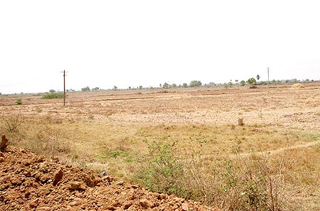 Parched land is a common sight in Tiruvallur