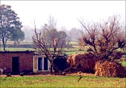 A village house in Mandi