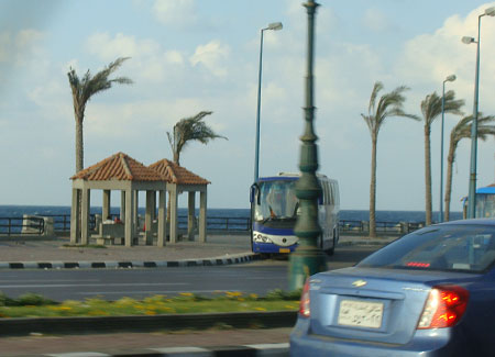 Alexandria is a mix of old world charm and modern day colours