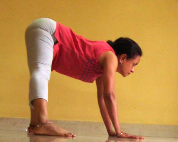 Prasarita padottanasana (Wide-legged spread angle pose)