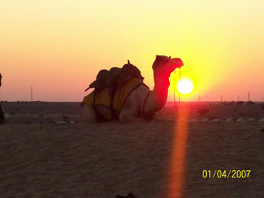 Sunset at Sam, Jaisalmer