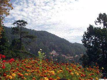Shimla, Himachal Pradesh