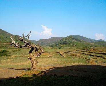 Araku Valley, Andhra Pradesh