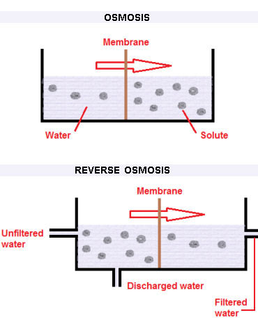 Osmosis and Reverse Osmosis processes