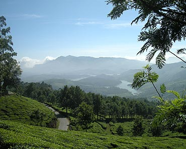 Munnar, Kerala
