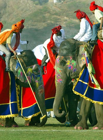 Participants sitting atop elephants play polo during the Elephant Festival in Jaipur.
