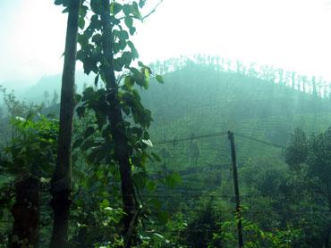 Vythri, Kerala