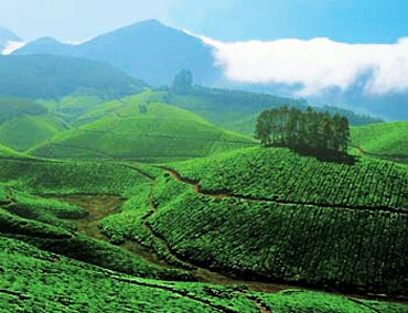 Munnar second-best Asian travel destination for 2010