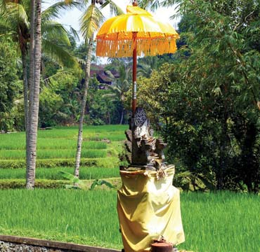 Temples dot the roads and fields of Bali.