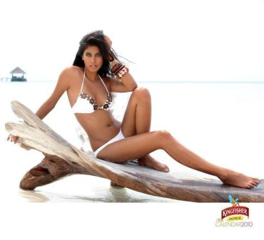 From the Kingfisher Calendar 2010