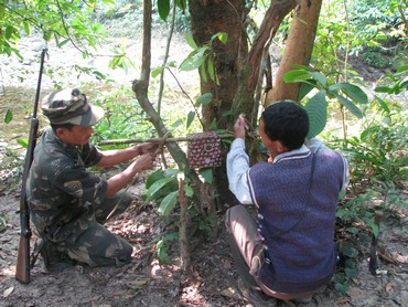 Camera traps being set up during a tiger sign survey