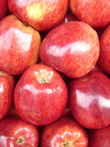 The pectin in apples lowers cholesterol