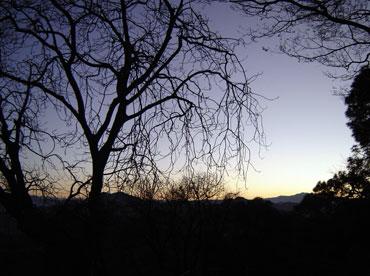 Winters in Kasauli