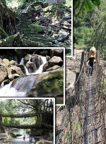 Travel: Trekking to the living bridges of Cherrapunji