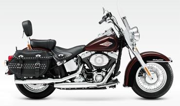 Harley Davidson's Softail