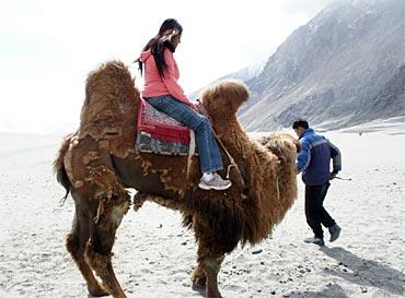 A camel ride un Hunder village.