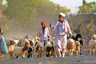 Village traffic