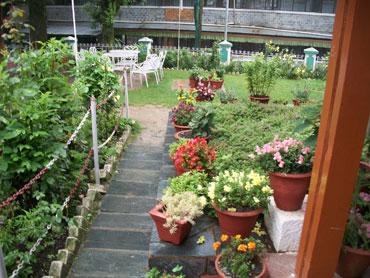Hotel Bhagsu's lawns
