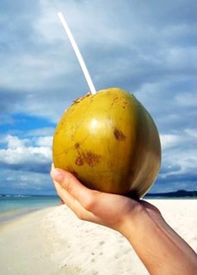 Coconut water is a refreshing summer cooler