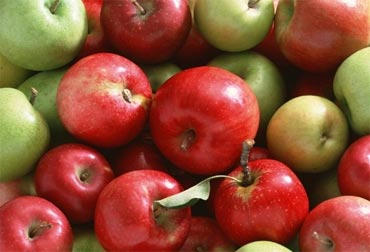Apples or bananas or any fresh fruit