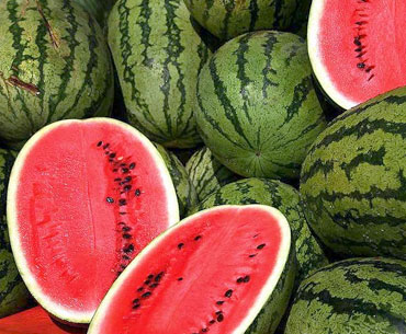 Watermelon is a high calorie index fruit